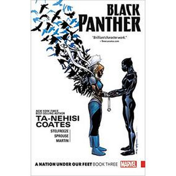 Black Panther Vol. 3 : A Nation Under Our Feet Bk 3 TP